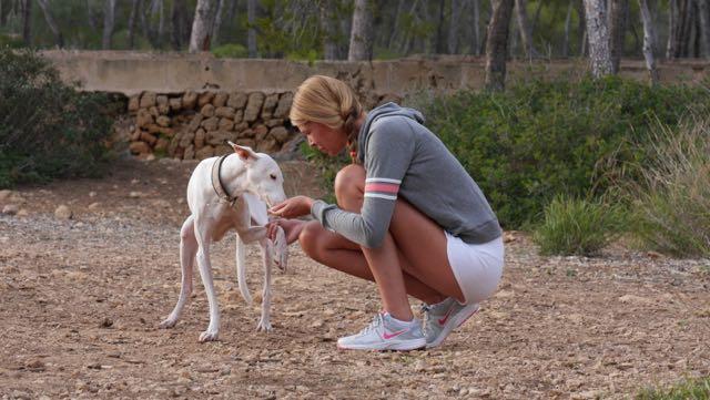 Übung Pfote Snowy Doggy Fitness Urlaub mit Hund