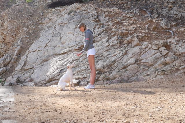 Übung Sitz Tessa Doggy Fitness Urlaub mit Hund