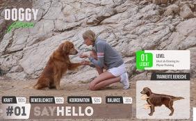 Say Hello - Pfote geben