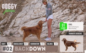 Back Down - Steh Sitz Transfer