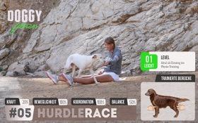 Hurdle Race - Cavaletti Training