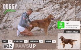 Paws Up - Pfoten anheben