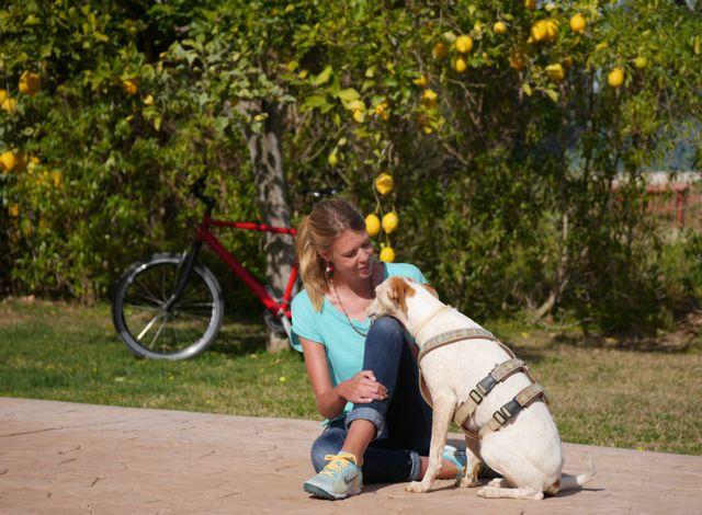 Radfahren mit deinem Hund – Gesundheit und Spaß