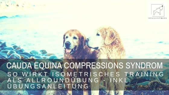 Cauda Equina Compressions Syndrom – Isometrie als Allroundübung