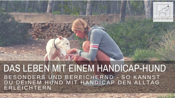 Das Leben mit einem Handicap-Hund - Ich verrate dir wichtige Tipps für das Leben und den Alltag, für ein tolles und unkompliziertes Leben trotz Behinderung.