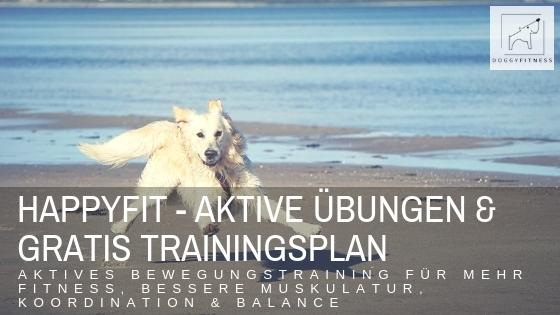 HAPPYFIT – aktives Bewegungstraining für die Fitness deines Hundes – inkl. Trainingsplan!