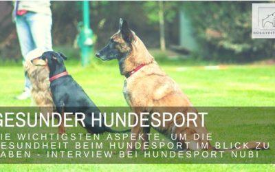Gesunder Hundesport – die Gesundheit deines Hundes im Blick! Interview bei Hundesport Nubi