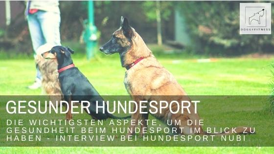 Das Thema Gesundheit wird im Hundesport immer größer und wichtiger. Im Interview mit Hundesport Nubi verrate ich dir die wichtigsten Basic dazu.
