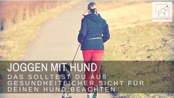 Joggen mit deinem Hund macht nicht nur Spaß. Beim Laufen im Trab baut der Hund Muskulatur, Kraft und Kondition auf. Das solltest du dabei beachten!