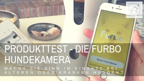 Produkttest Furbo Hundekamera - Doggy Fitness