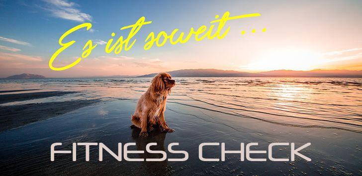 Mein FitnessCheck für deinen Hund