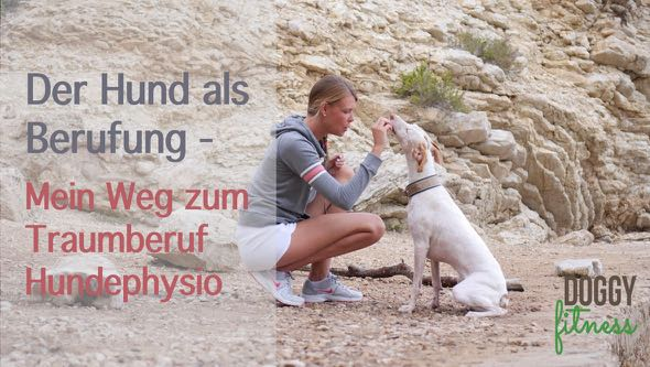 Hundephysio Beruf - Doggy Fitness Martina Flocken Hundephysiotherapie