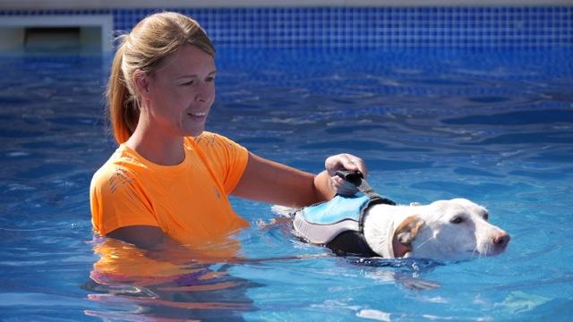 Schwimmweste – Sicherheit und Spaß im Wasser – Produkttest: Alcott Mariner