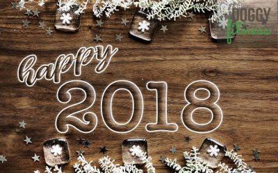 Jahresrückblick und ein kleiner Ausblick aufs Jahr 2018!
